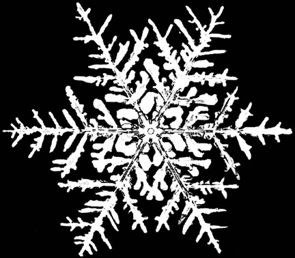 Snowflake on black background